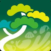 솔향강릉알리미 icon