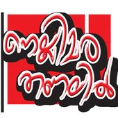 Nellimarathanalil icon