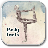 Human Body System Facts icon