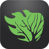 Rootscamp icon