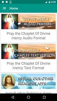 Divine Mercy Audio Prayers poster