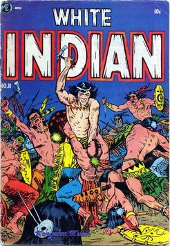 White Indian #11 poster