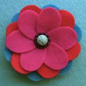 Wildflower Identification icon