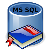 MsSQL Notes beta icon