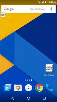 Check Credit poster