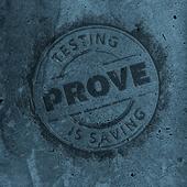 Ohjelmistotestaus  -  Prove icon