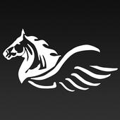 A.Pegasus Bail Bonds icon
