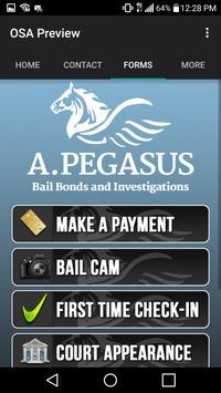 A.Pegasus Bail Bonds apk screenshot