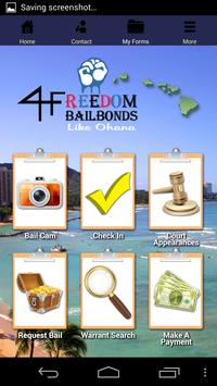 Hawaii Bail apk screenshot