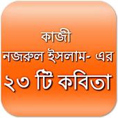 নজরুল ইসলাম : ২৩ টি কবিতা icon