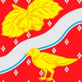 Орехово-зуево. карта погода icon