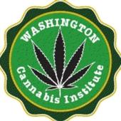 Washington Cannabis Institute icon