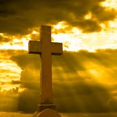 Catholic Bible Douay-Rheims icon