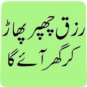 Rizq Chappar Phaar Ker Aye Ga icon