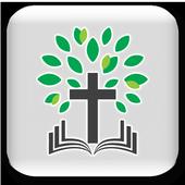 크리스찬 나무 icon