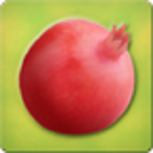 Pomegranate Kannada icon