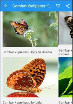 Gambar Wallpaper Kupu Kupu apk screenshot