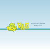 VenE Bloemenexport icon