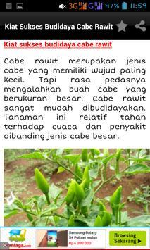 Budidaya Cabe apk screenshot
