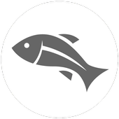 Fish Feeder icon