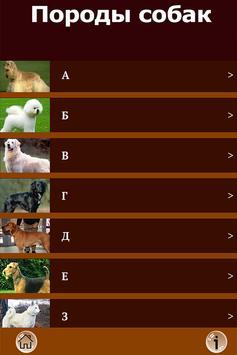 Породы собак - все собаки FREE poster