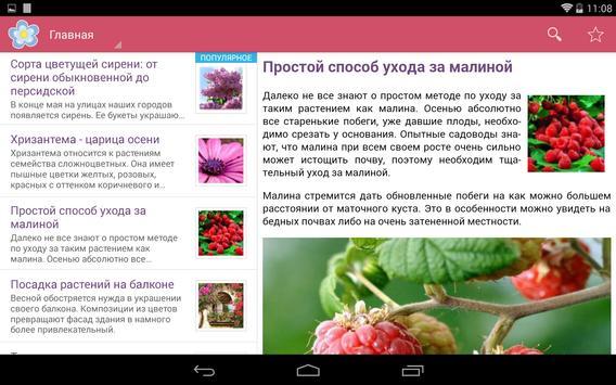 Флорист - Все о цветах apk screenshot
