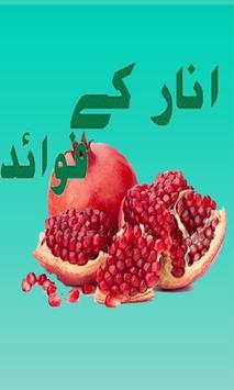 Pomegranate (Anar)  K Fwaid poster