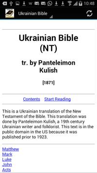 Ukrainian Bible Translation poster