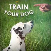 Dog Training - Train your Dog icon