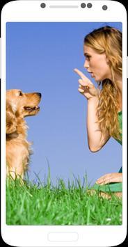 Dog Training - Train your Dog poster