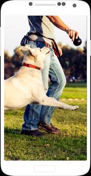 Dog Training - Train your Dog apk screenshot