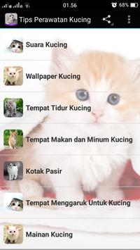 Cat Care Tips poster