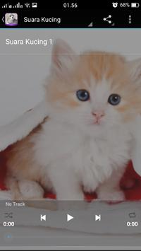 Cat Care Tips apk screenshot