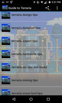 Play Guide for Terraria poster