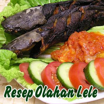 Aneka Resep Olahan lele poster