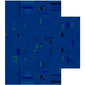ISurvey icon