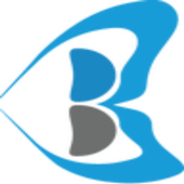 BELTHINK BUSINESS CONSULTING icon