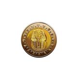 Egyptian Coins icon