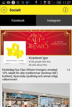 Kvarteret Igor Intern apk screenshot