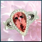 Vandenberg's Jewellers icon