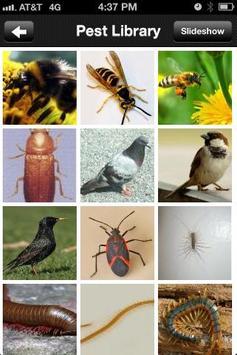 World Pest Control apk screenshot