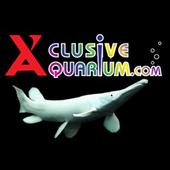 X'clusive icon