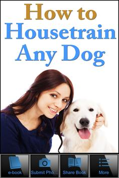 How To House Train Your Dog poster