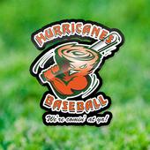 Reno Hurricanes Baseball icon