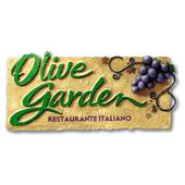 Olive Garden Brasil icon