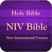 NIV Bible Study icon