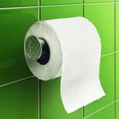 Туалетная книга icon