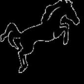 iSkoda icon