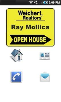 Ray Mollica Realtor poster