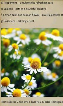 Herbal Healing for Everyone apk screenshot
